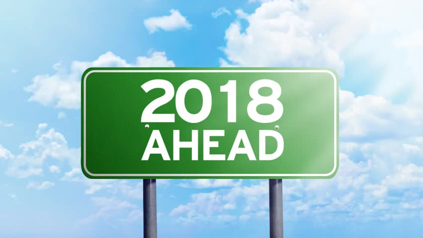 2018: Employment Status – Does it look like Duck?