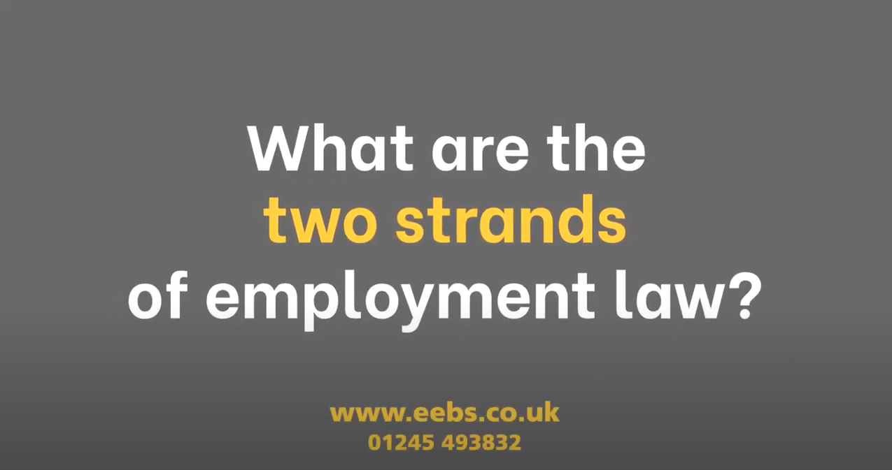 What are the two strands of employment law?