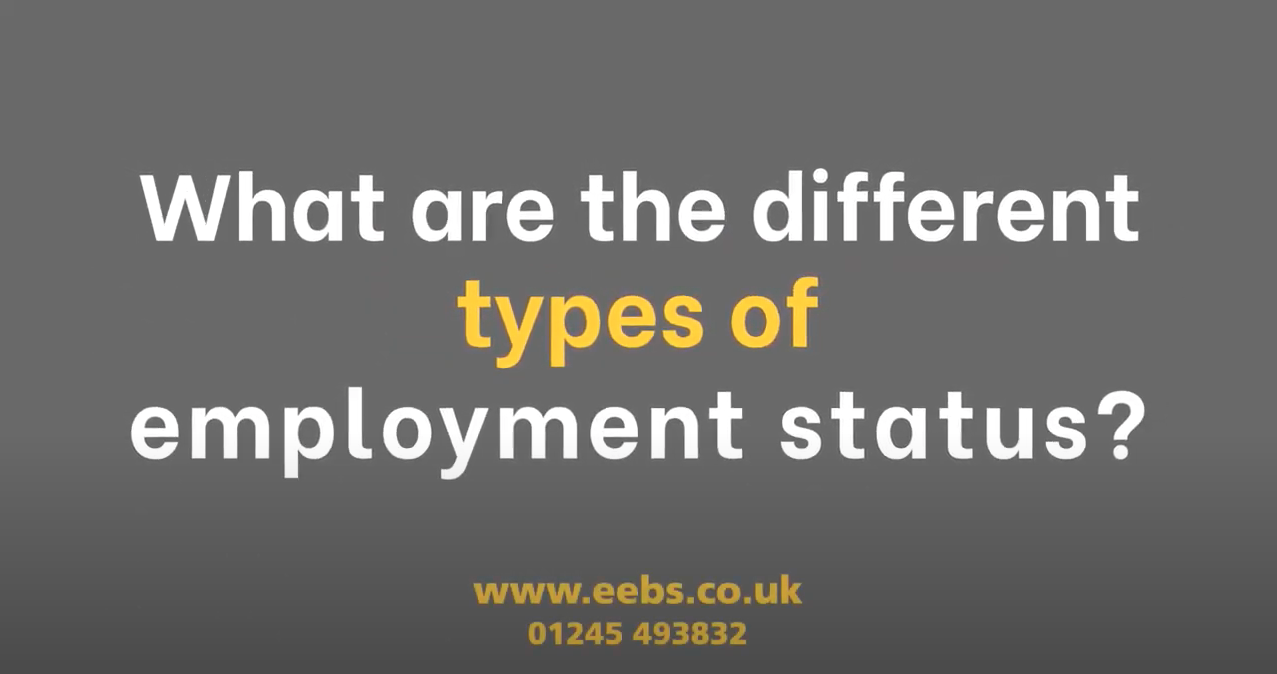 How many types of employment status are there? And what are they?